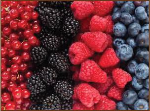 eating berries good for skin